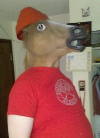 DEVO HORSE WANTS YOU (TO STOP SPANKING)