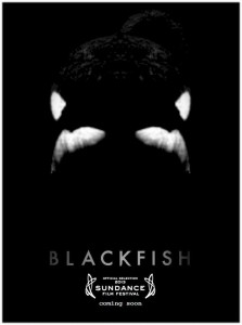 Blackfish Poster