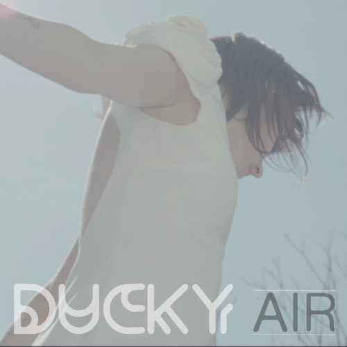 Cover of Air